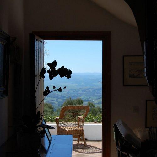 Almuna View