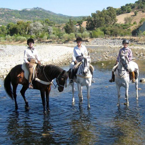 Horse Riding Almuna